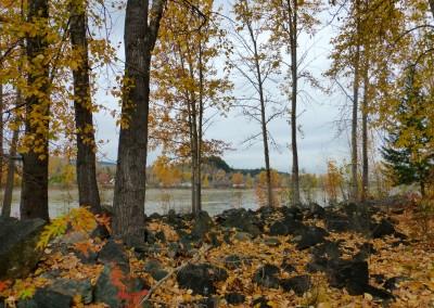 Fraser River by Anne Brown