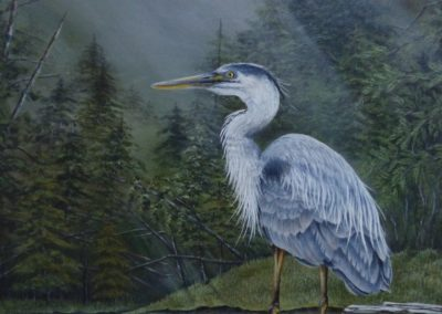 "'King of the Marshlands' Great Blue Heron Acrylic on 21"" x 15"" watercolour paper (matted and framed) Greeny Lake, Lac la Hache, B.C. For sale @ $550 By Bobbie Crane"