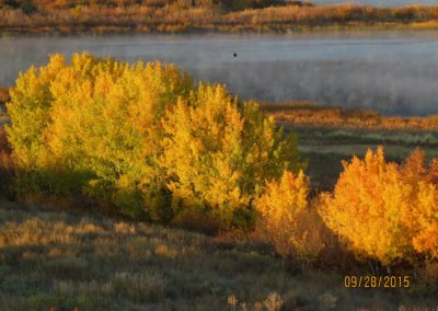 crow over williams lake with fall colors  By Rebecca Pickard